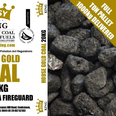 Polish Gold Coal (Full Ton)